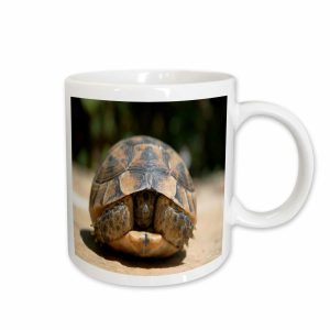 CREATURE CUPS Turtle Ceramic Cup